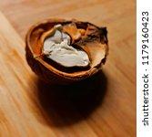 juglans regia nut isolated | Shutterstock . vector #1179160423