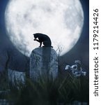 black cat sitting on a... | Shutterstock . vector #1179214426