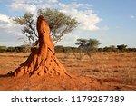 Termite mound. Giant termites. Near Epupa village. Namibia. Africa.