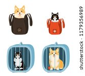 travelling with pets. vector... | Shutterstock .eps vector #1179356989