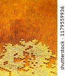 bee honeycombs.the structure of ...   Shutterstock . vector #1179559936