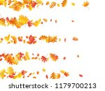 oak  maple  wild ash rowan... | Shutterstock .eps vector #1179700213