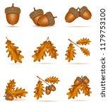 set icons autumn oak acorns... | Shutterstock . vector #1179753100