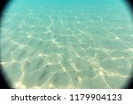 seabed  underwater photography  | Shutterstock . vector #1179904123