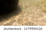seabed  underwater photography  | Shutterstock . vector #1179904126