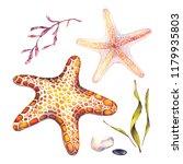 watercolor set of underwater... | Shutterstock . vector #1179935803