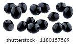 Olives Collection. Black Olive...