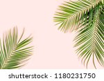 tropical palm leaves on pink... | Shutterstock . vector #1180231750