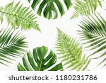 background  pattern with exotic ... | Shutterstock . vector #1180231786