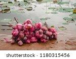 lotus flower meditation asian... | Shutterstock . vector #1180315456