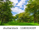 forest and blue sky. nature... | Shutterstock . vector #1180324339