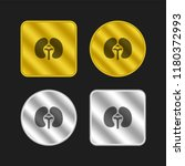 kidneys gold and silver...