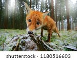 life in the snowy forest. red... | Shutterstock . vector #1180516603