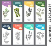 set of essential oil labels.... | Shutterstock .eps vector #1180516699