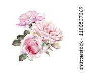 bouquet of roses  watercolor ... | Shutterstock . vector #1180537369