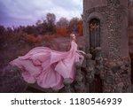 wonderful elegant girl elf with ... | Shutterstock . vector #1180546939