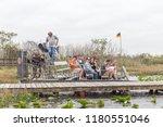everglades  florida  usa  ... | Shutterstock . vector #1180551046
