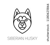 siberian husky linear face...   Shutterstock .eps vector #1180625866