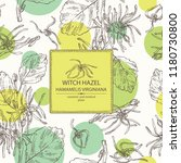 background with witch hazel ... | Shutterstock .eps vector #1180730800