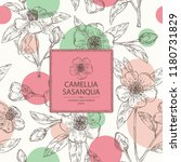 Background With Camellia...