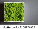 generic concept image of... | Shutterstock . vector #1180794619