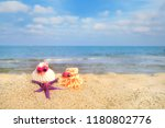 funny shells with eyes at the... | Shutterstock . vector #1180802776