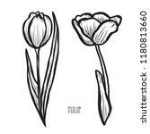 decorative tulip flowers ... | Shutterstock .eps vector #1180813660