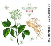 realistic botanical color...   Shutterstock .eps vector #1180858579