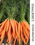 bright carrots in the market | Shutterstock . vector #1180879903