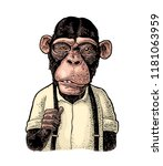 monkey businessman dressed in... | Shutterstock .eps vector #1181063959