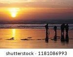 ocean shores  washington   usa  ... | Shutterstock . vector #1181086993