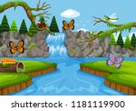 insects in waterfall scene... | Shutterstock .eps vector #1181119900