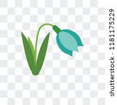 snowdrop vector icon isolated... | Shutterstock .eps vector #1181175229