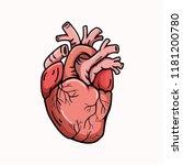 heart shape illustration used... | Shutterstock .eps vector #1181200780