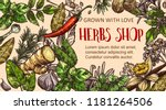 herb shop banner with natural... | Shutterstock .eps vector #1181264506