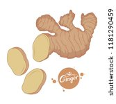 hand drawn ginger root  spicy... | Shutterstock .eps vector #1181290459