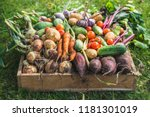 bio food. garden produce and... | Shutterstock . vector #1181301019