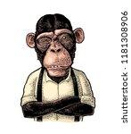 Monkey Businessman With Paws...