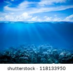 underwater coral reef seabed... | Shutterstock . vector #118133950
