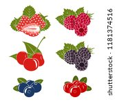 set of berries icons on a white ... | Shutterstock .eps vector #1181374516