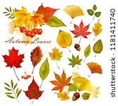 beautiful colorful autumn... | Shutterstock .eps vector #1181411740