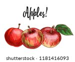 three delicious red apples... | Shutterstock . vector #1181416093
