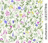 seamless floral pattern. meadow ... | Shutterstock .eps vector #1181557846