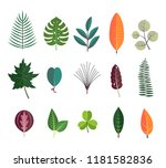 green tropical leaves floral... | Shutterstock .eps vector #1181582836