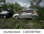 broken tree fallen on top of... | Shutterstock . vector #1181587483