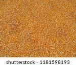 large heap of corn grains.... | Shutterstock . vector #1181598193