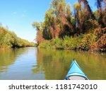 yellow autumn trees on the...   Shutterstock . vector #1181742010