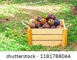 mangosteens in wooden box.... | Shutterstock . vector #1181788066