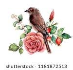 watercolor bouquet with bird... | Shutterstock . vector #1181872513