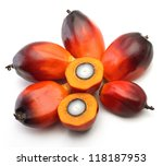 A Group Of Oil Palm Fruits On...